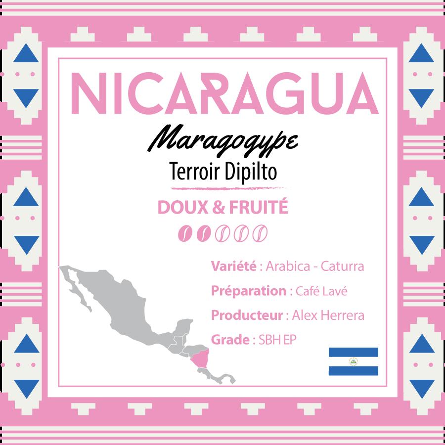 Café en grain NICARAGUA - Maragogype - Terroir Dipilto