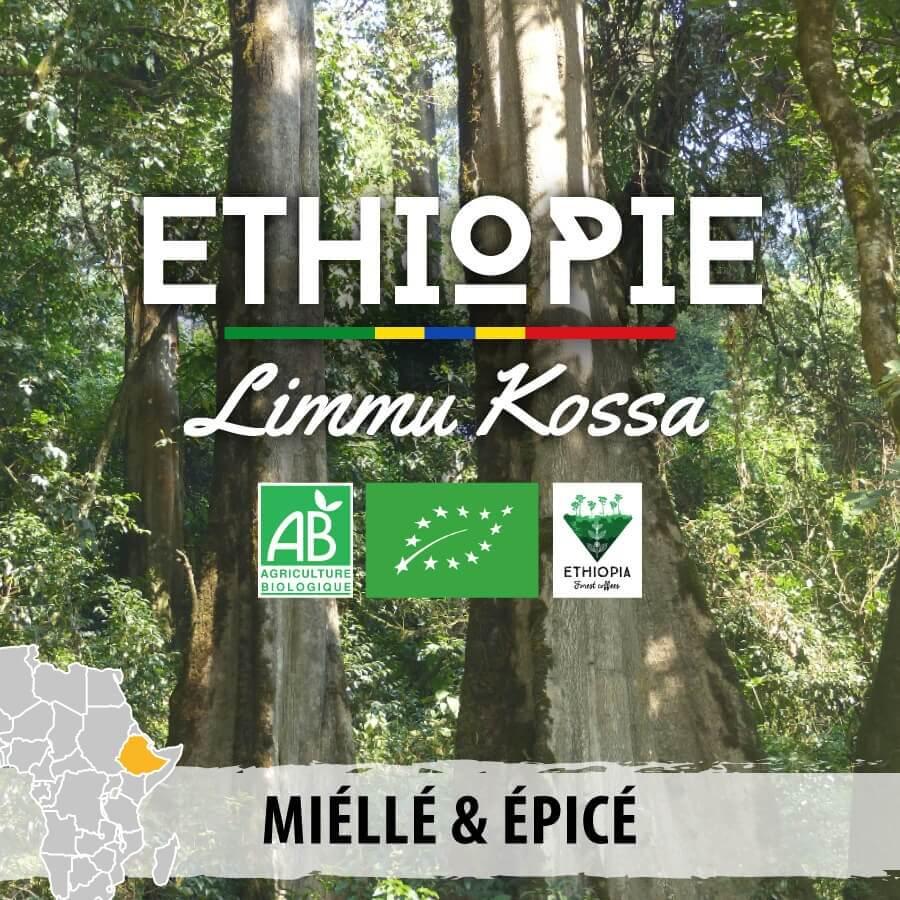 2020 05 22 ethiopie limmu kossa