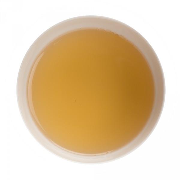 5677 christmas tea vert boite