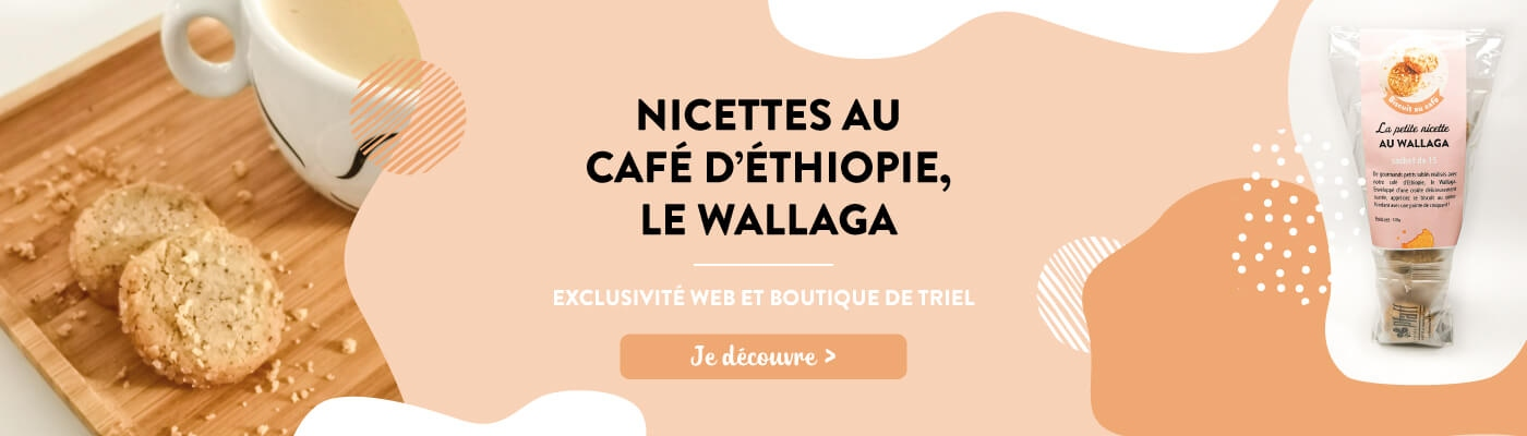 Nicettes au café Wallaga