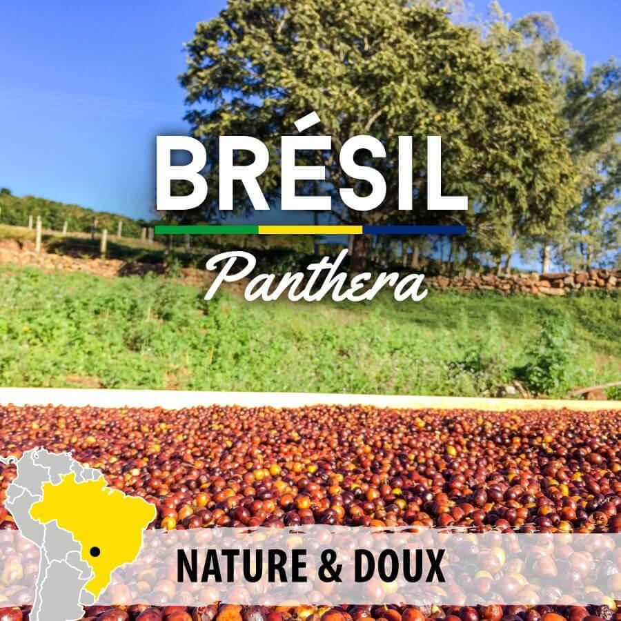 bresil panthera compresse