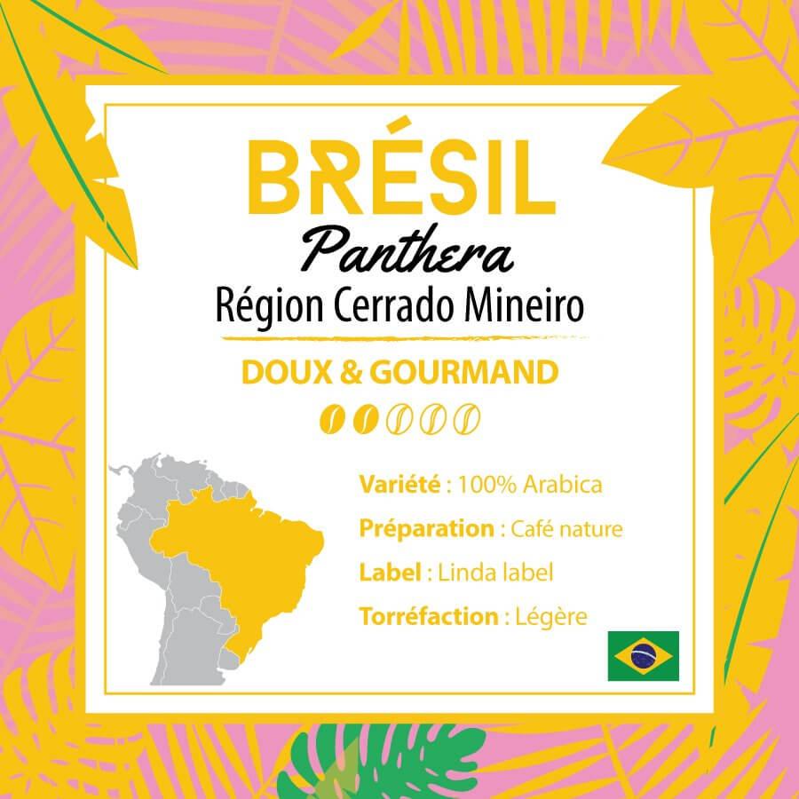 Café BRESIL - Panthera - Région Cerrado - café moulu
