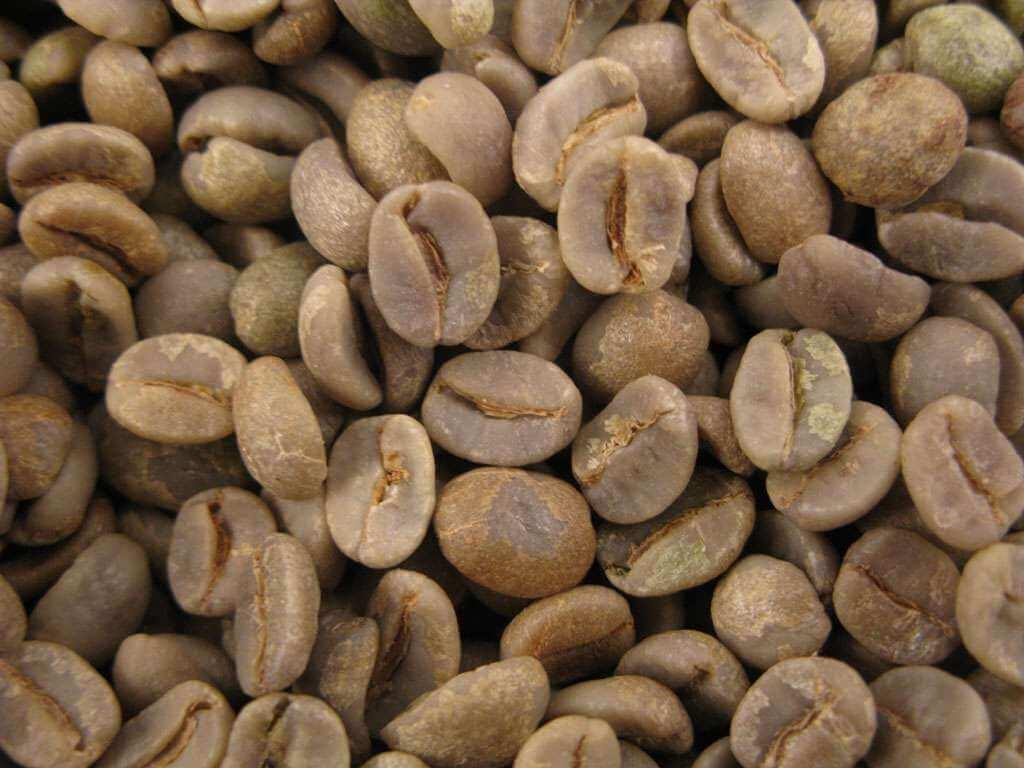 Café vert : Brésil cerrado Fine Cup  (non torréfié) - 1KG