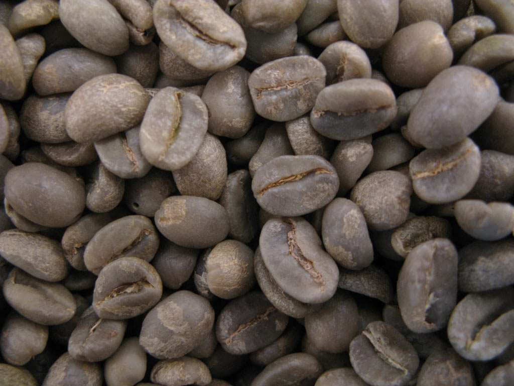 Café vert : COLOMBIE SUPREMO (non torréfié) - 1 KG