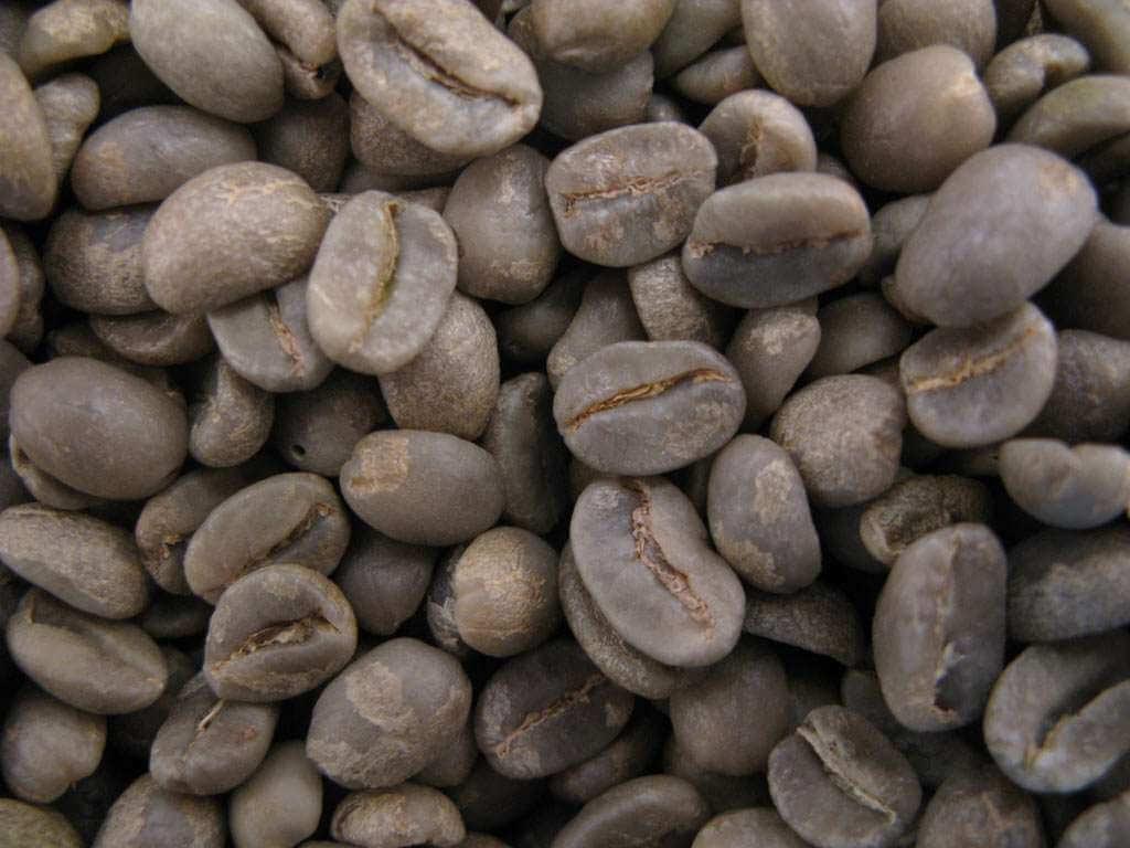 cafe vert colombie supremo 1