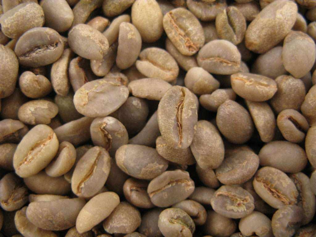 """Café vert : Moka d'éthiopie HARAR """"Mesela"""" - 1KG"""