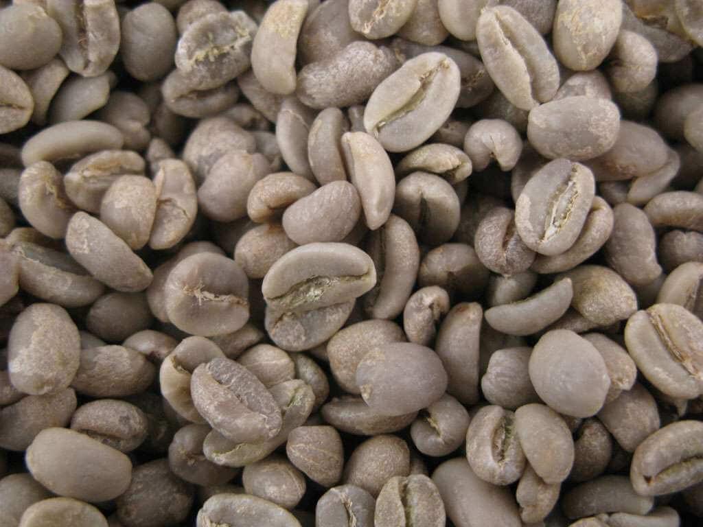 Café vert : Moka d'éthiopie sidamo grade 2 - 1KG