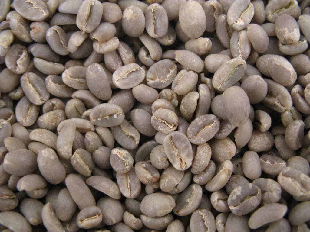 café vert : Moka d'éthiopie YRGACHEFFE - 1KG
