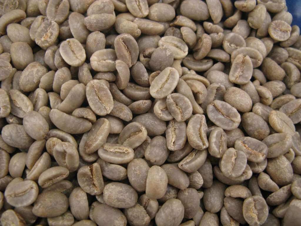 Café vert : Papouasie SIGRI - 1 KG