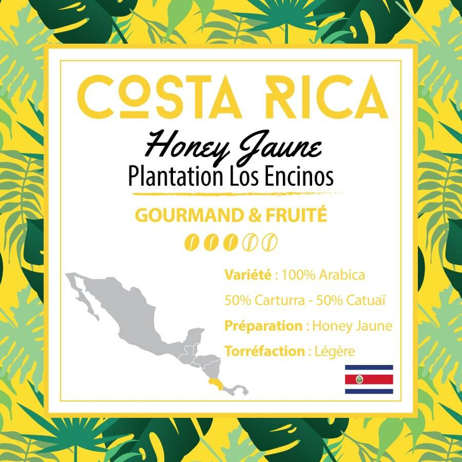 costa rica los encinos honey jaune