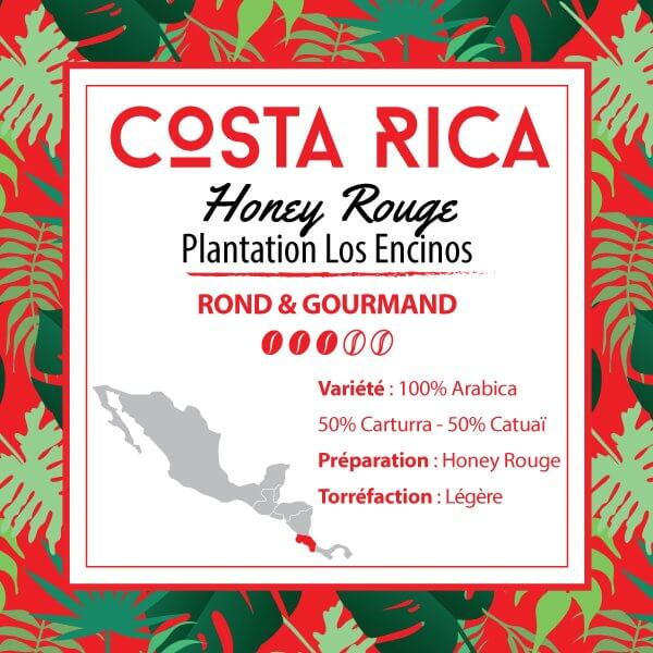 Café COSTA RICA - Honey Rouge - Plantation Los Encinos - café moulu