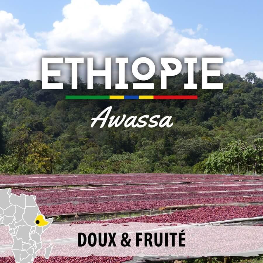 ethiopie awassa moka sidamo compresse