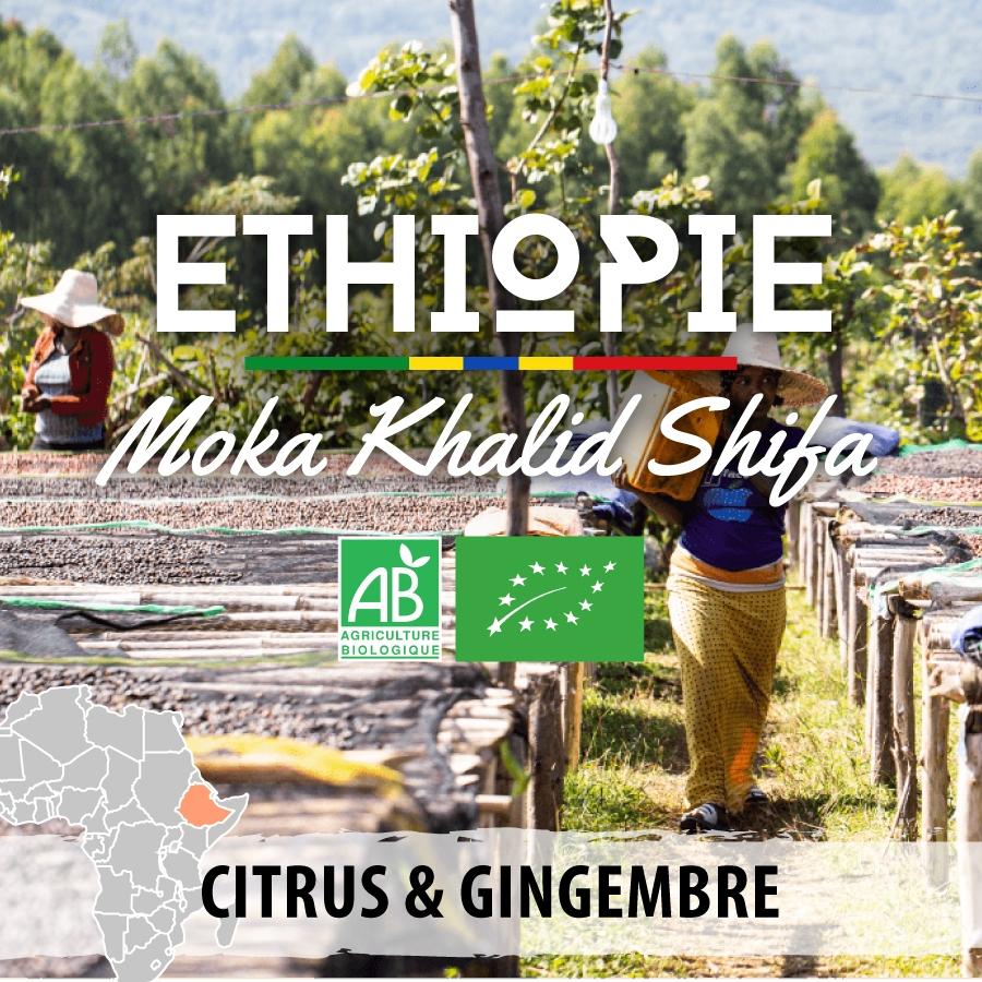 ethiopie bio  moka khalid shifav4