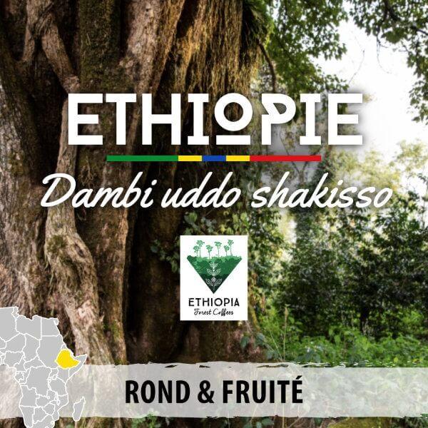 ethiopie bio guji dambie uddo shakisso non bio
