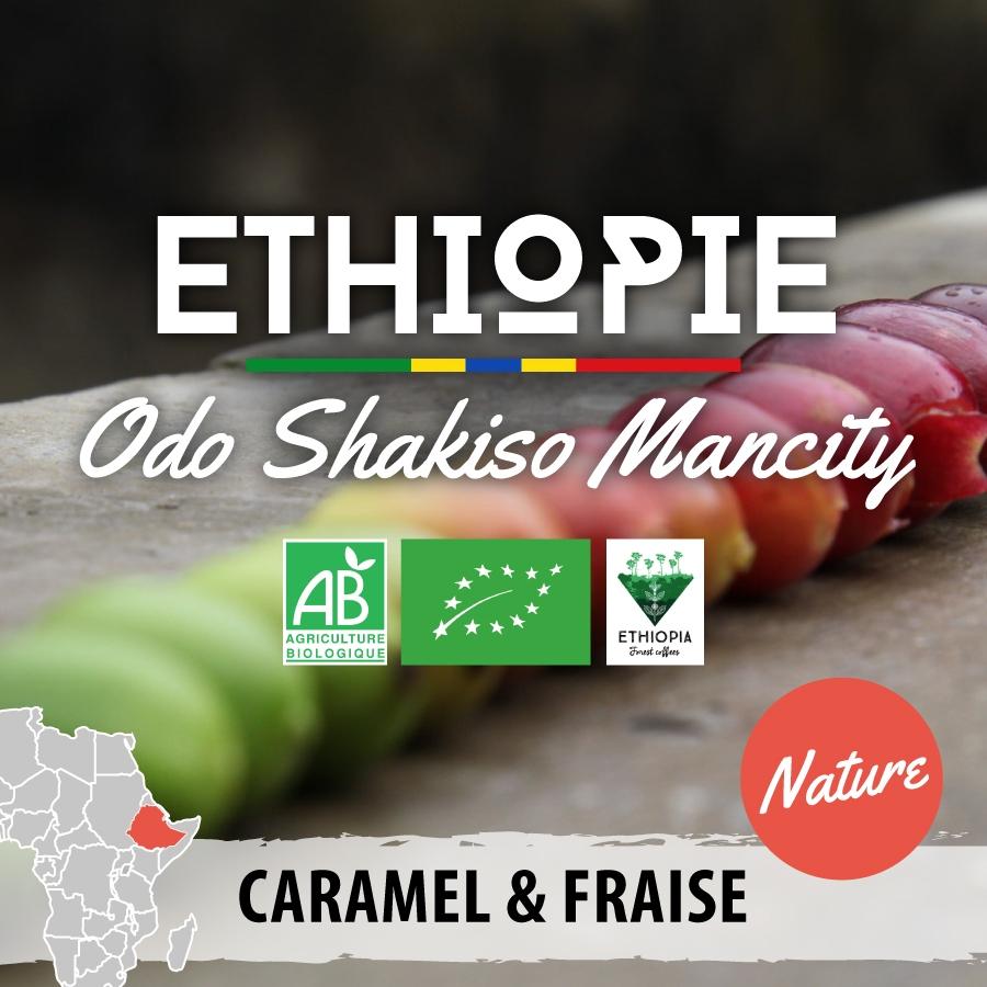 ethiopie bio moka guji odo shakiso mancity version nature