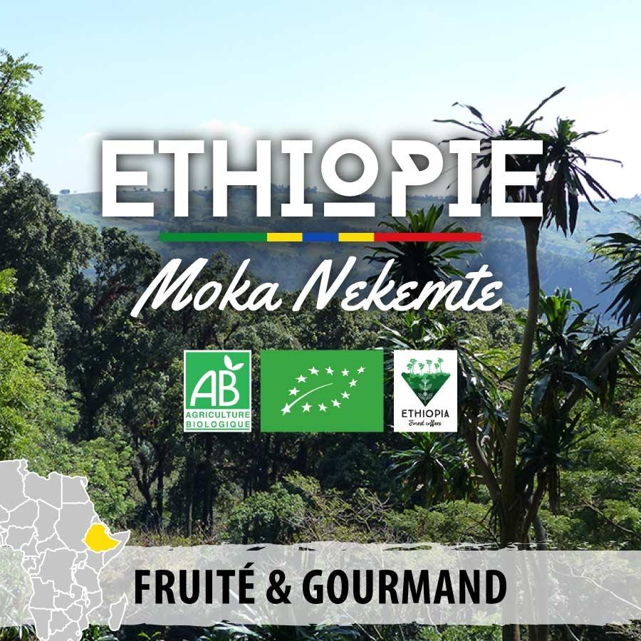 ethiopie bio moka nekemte