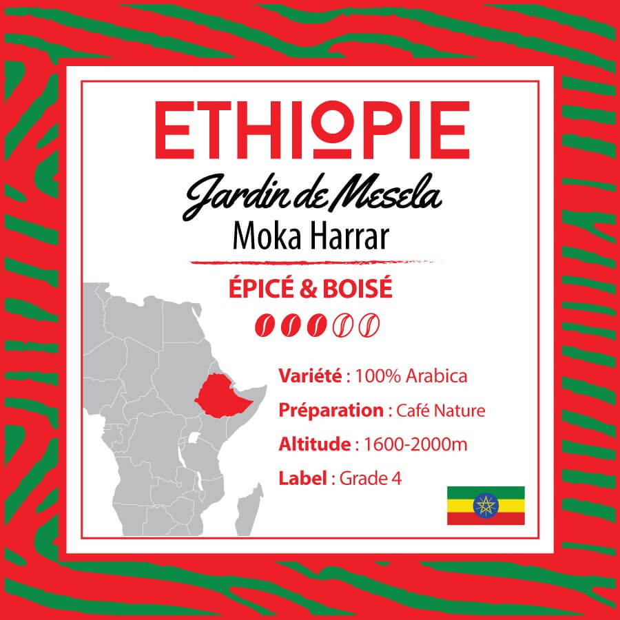 Café en grain ETHIOPIE - Jardin de Mesela - Moka Harrar