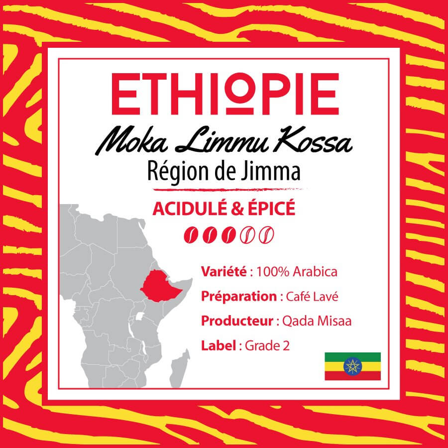 ethiopie moka limmu kossa region jimma