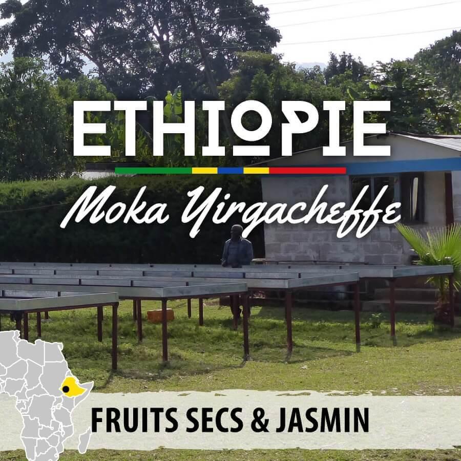 ethiopie moka yirgacheffe v2 compresse