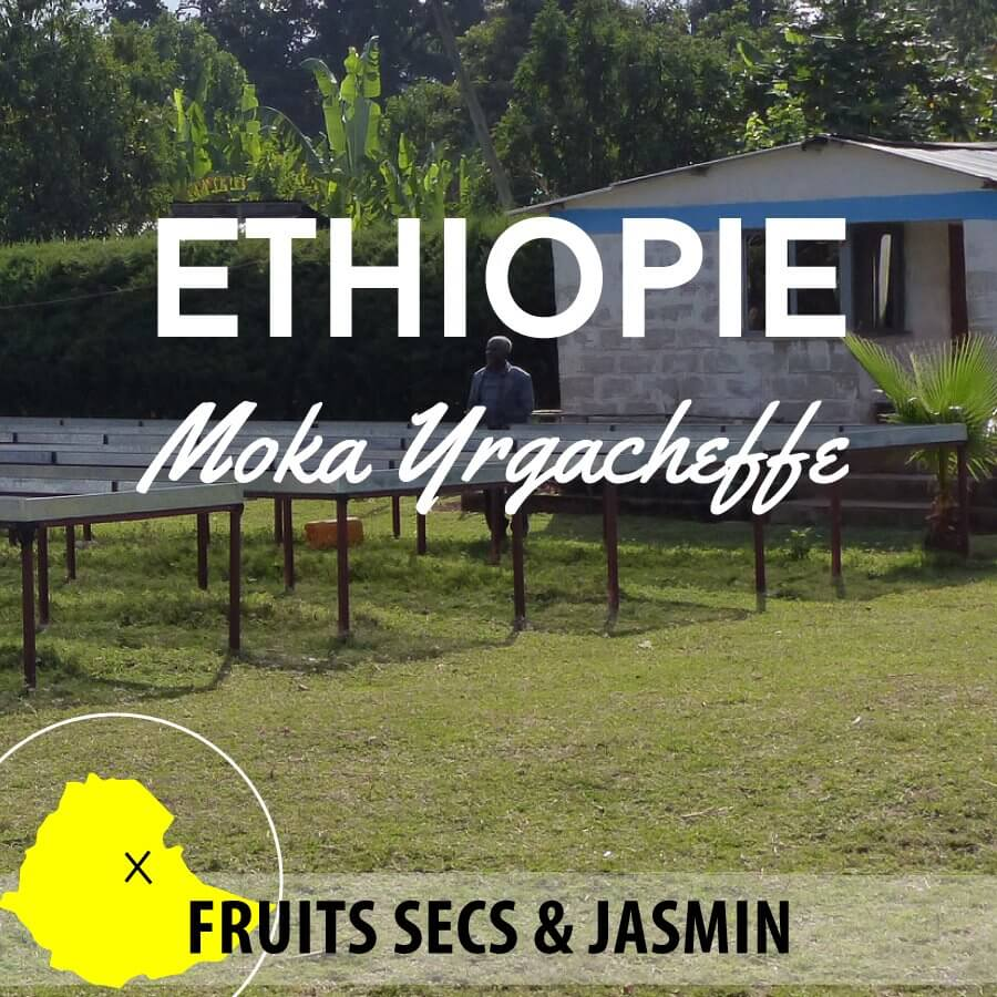 ethiopie moka yrgachefe grade2  version photo