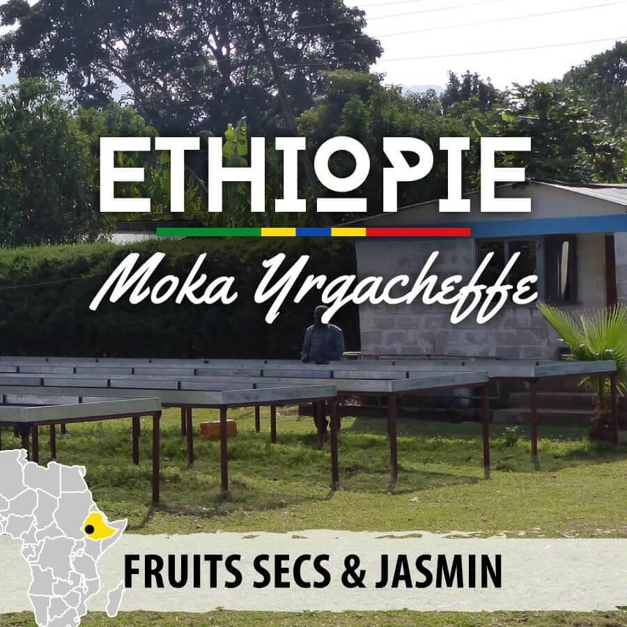 ethiopie moka yrgacheffe compresse