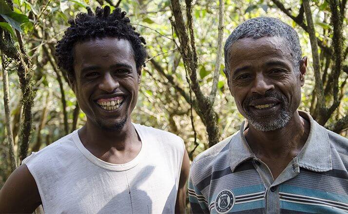 ethiopie terroir fendacha moka sauvage  2