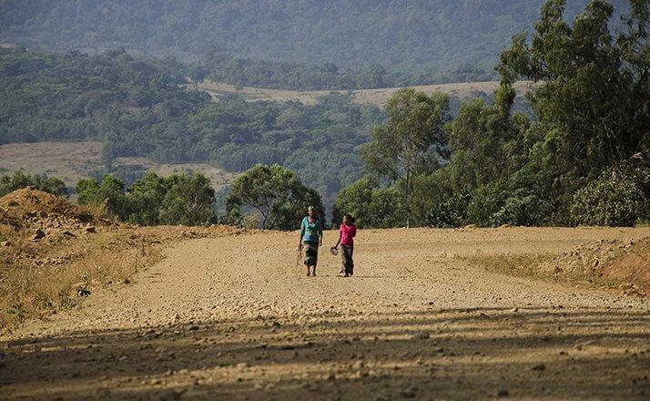 ethiopie terroir fendacha moka sauvage  5