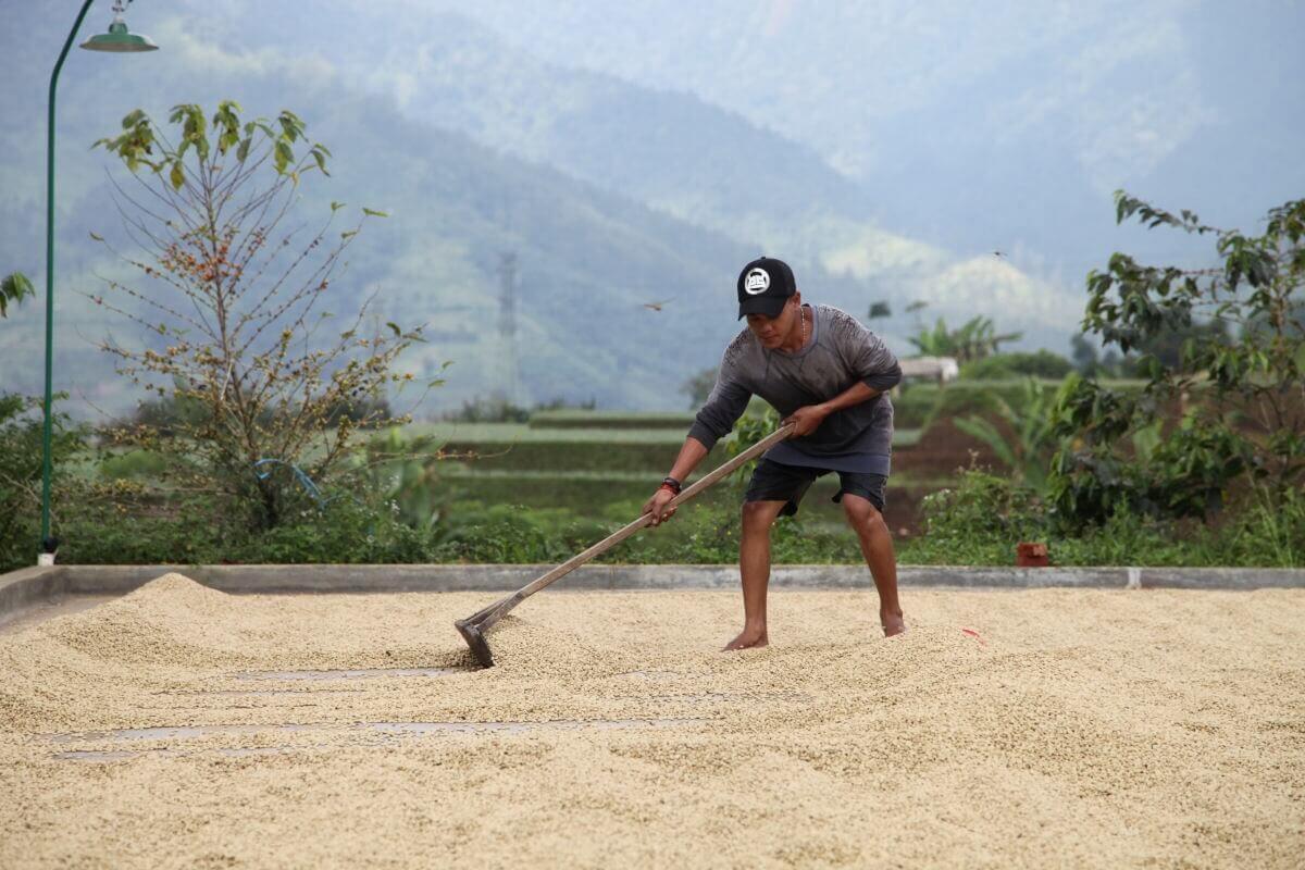 indonesie java sunda radiophare klasik beans nature g1  13
