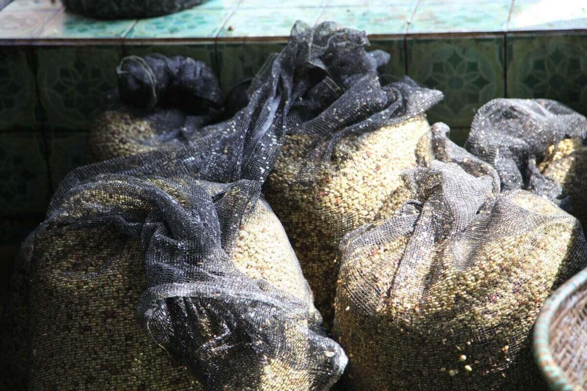 indonesie java sunda radiophare klasik beans nature g1  3