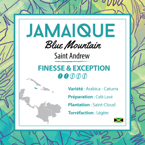 Café JAMAIQUE - Blue Mountain - Grade 1 - café moulu