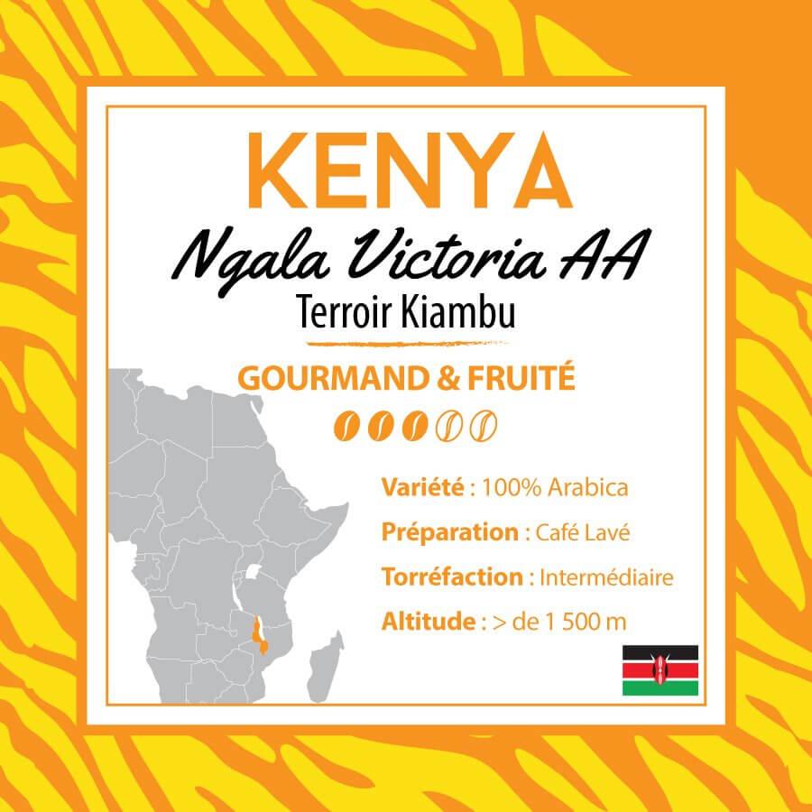 Café en grain KENYA - Ngala Victoria - AA