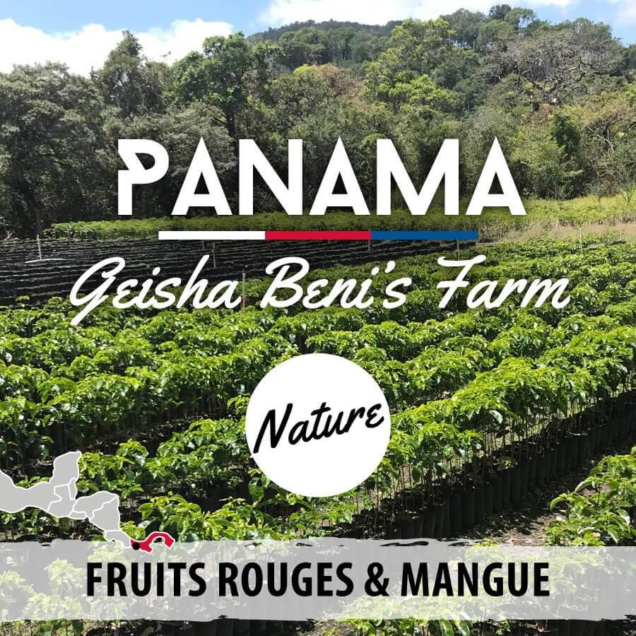 panama geisha beni farm nature compresse