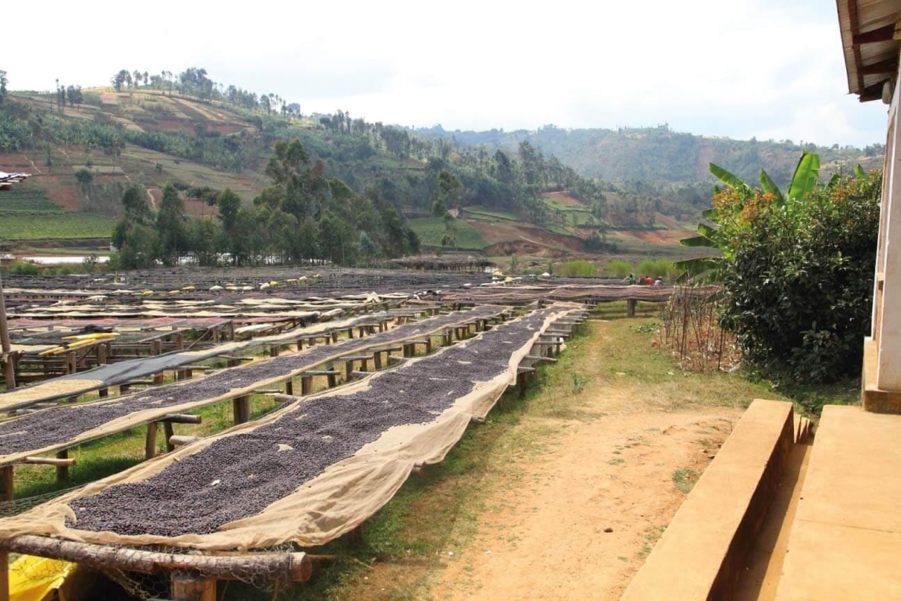 photo burundi 2