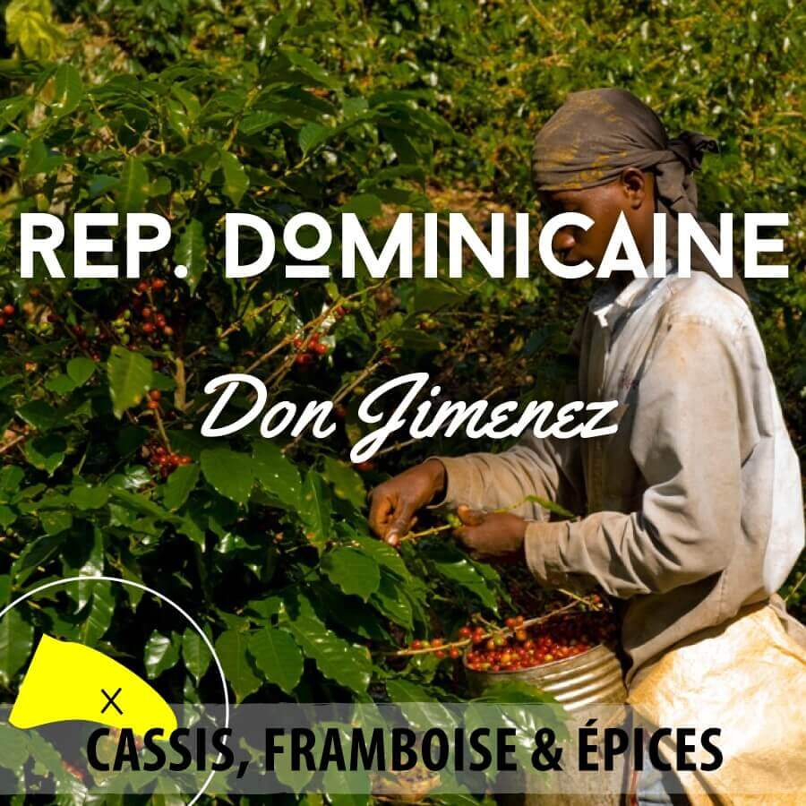 rep dom saint domingue web