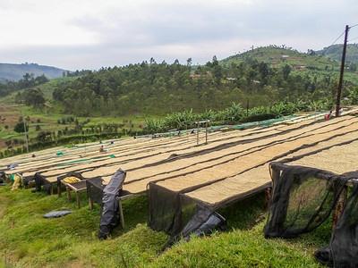 rwanda gakenke 4