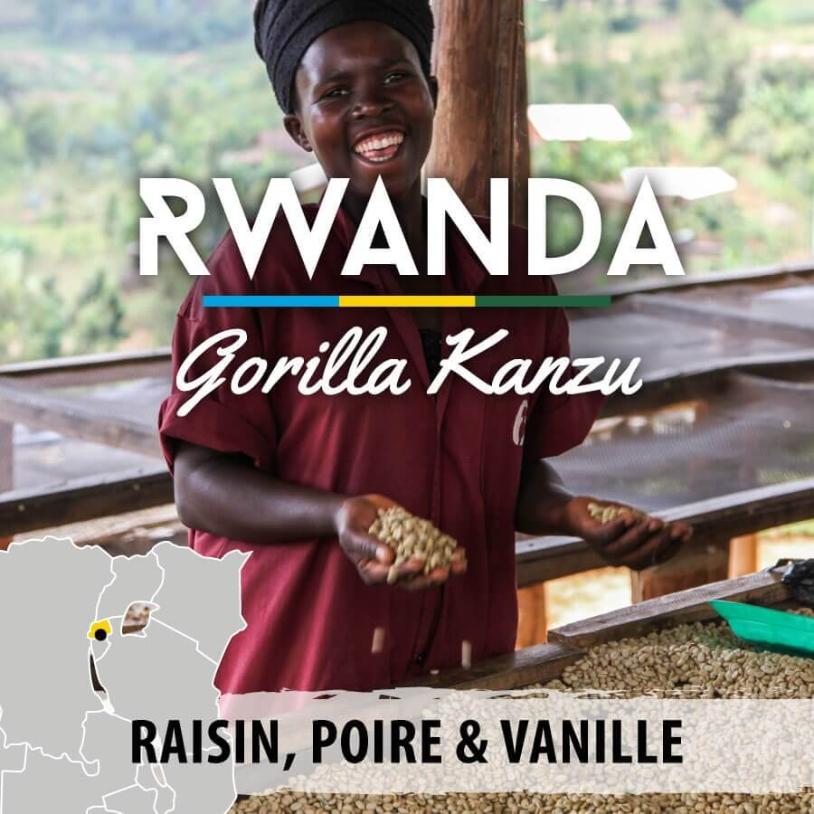 rwanda gorilla kanzu 1 compresse
