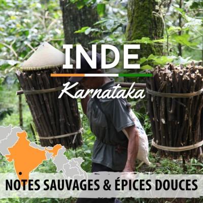 Café en grain INDE - Karnataka - Malabar Moussoné AA