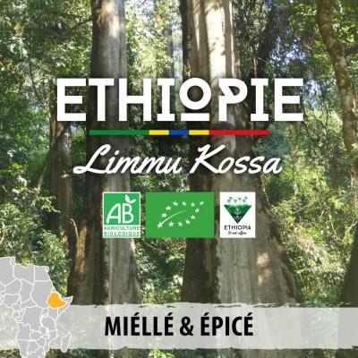 Café en grain bio Ethiopie Limmu Kossa