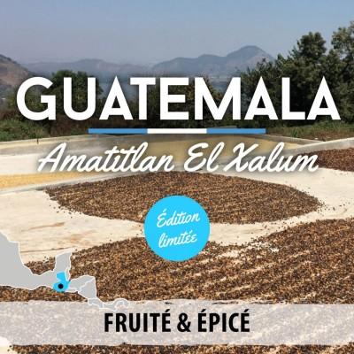 Café en grain en édition limitée Guatemala - Amatitlan El Xalum