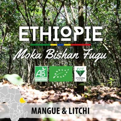 Café en grain BIO Ethiopie - Moka Bishan Fugu