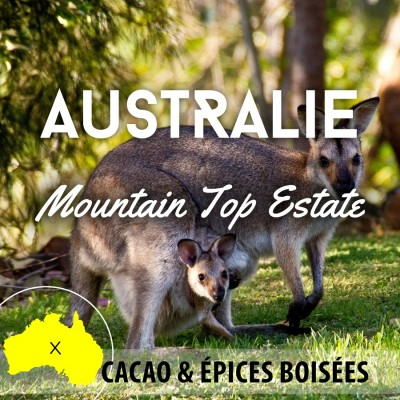 Café AUSTRALIE - Mountain Top Estate -  Brisbane -  Extra Fancy -Café Moulu