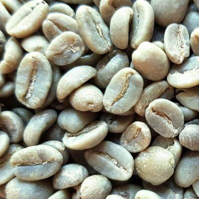 Café vert bio Colombie Finca Potosi - 1kg