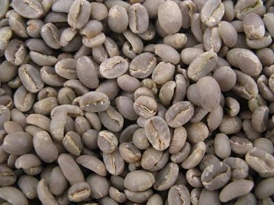 café vert d'Éthiopie Moka YRGACHEFFE - 1KG
