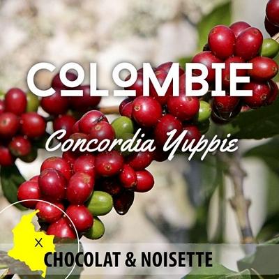 Café en grain COLOMBIE Antioquia - Concordia - YUPPIE