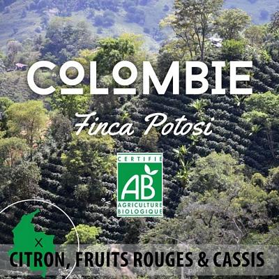 Café en grain BIO COLOMBIE - Finca Potosi BIO AB - Granja La Esperanza