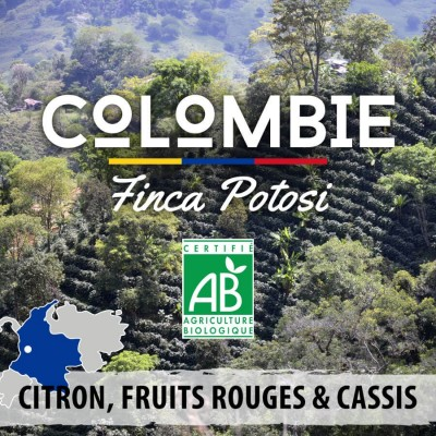 Café en grain bio Colombie Finca Potosi