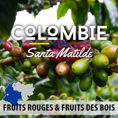 Café en grain Colombie Antioquia - Santa Mathilda - Geisha - Catalina
