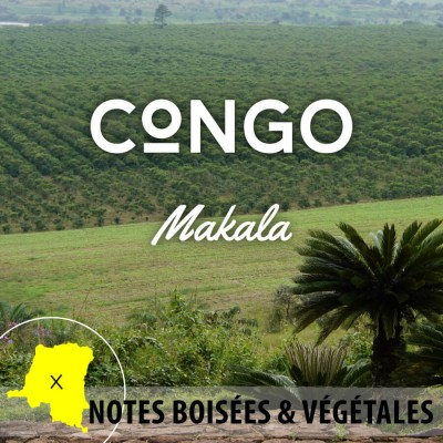 Café en grain CONGO - Makala - Kivu 4 Bord Lac