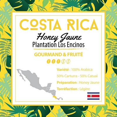 Café COSTA RICA - Yellow Catuai - Honey - café moulu