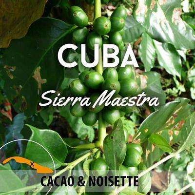 Café en grain Cuba - Sierra Maestra